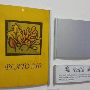Plato 210 mm